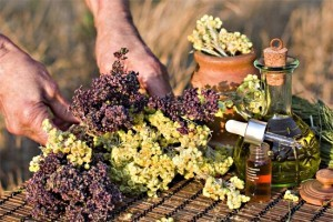 Aromatherapy concept. Bottles of essence oil with dried herb.